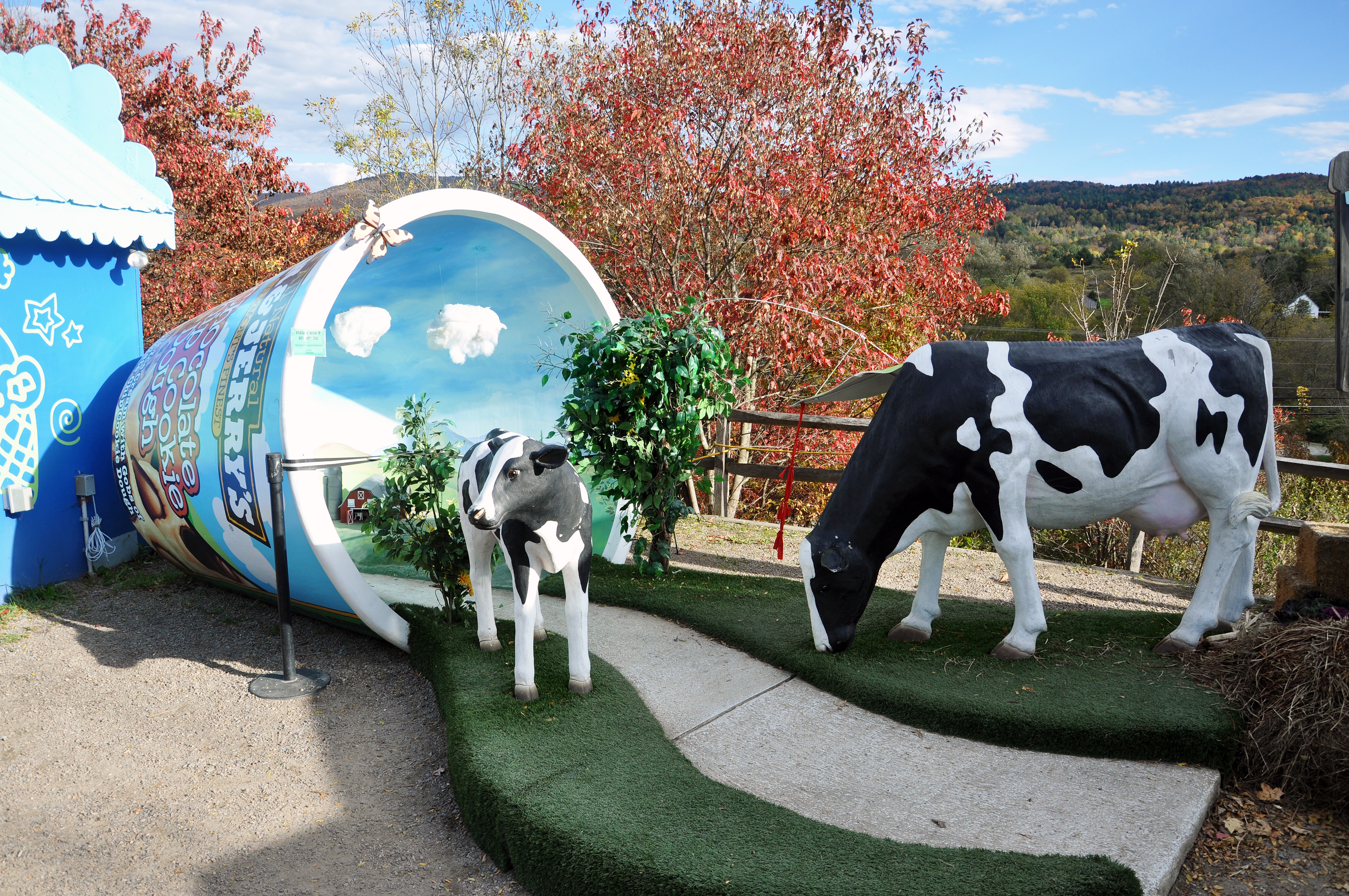 Statue of cows coming out of Ben and Jerry's Ice Cream