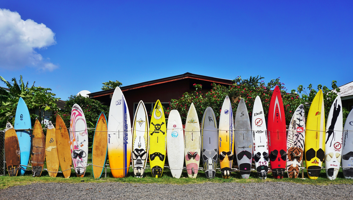 Hawaii-Paia-Surf-Boards054722330.JPG?mtime=20180424154856#asset:101594