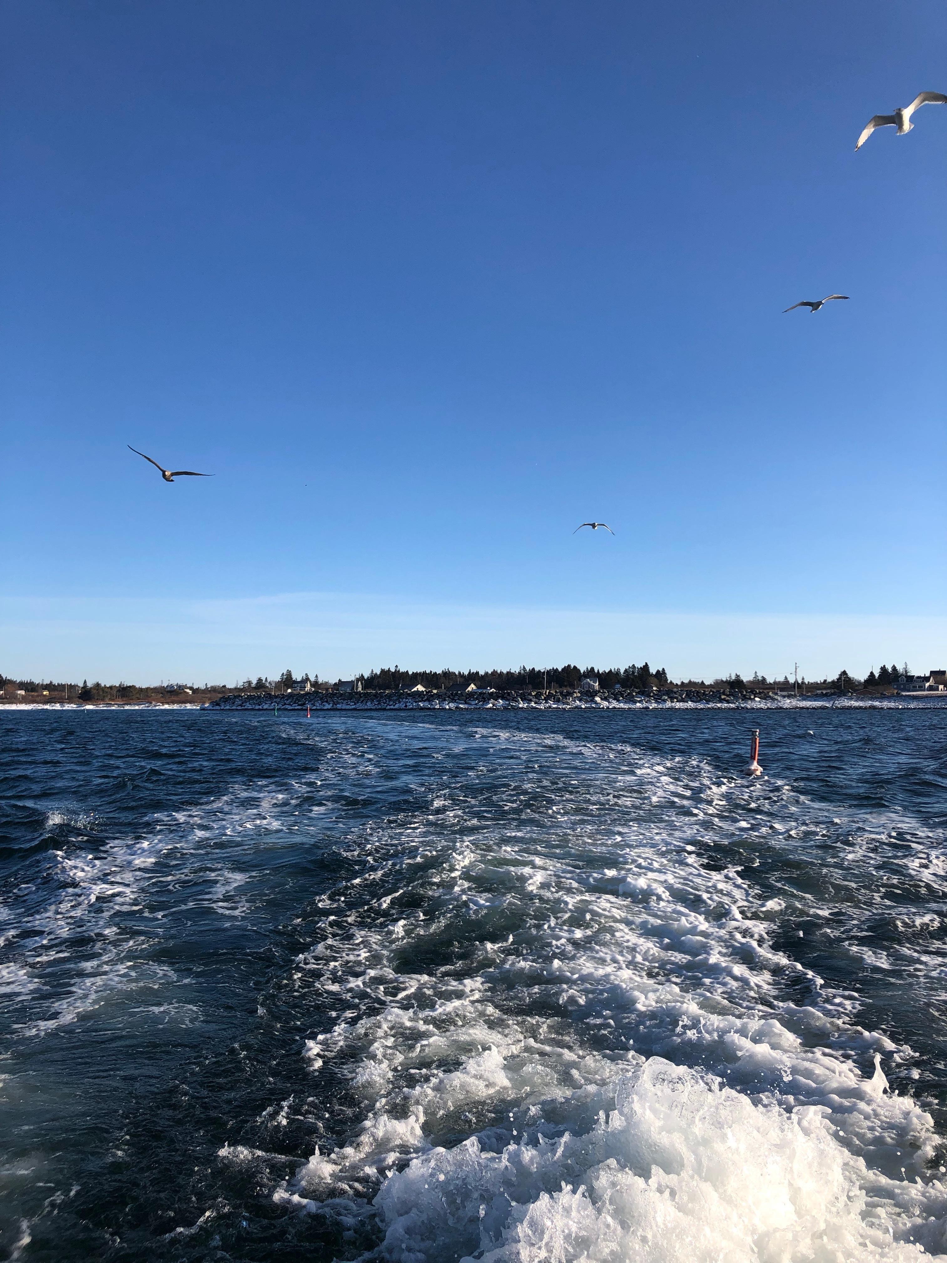 Lobster-Boat-wave-trail.jpeg?mtime=20190211105124#asset:104814