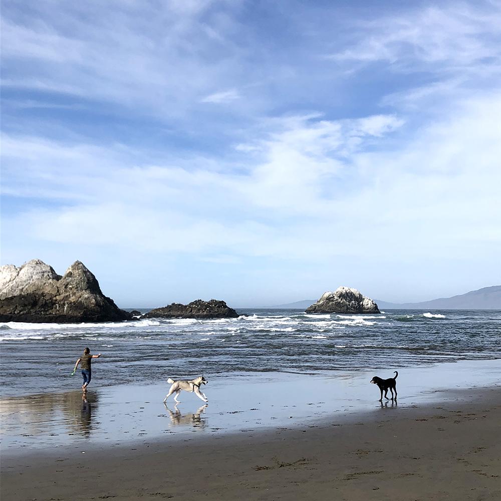 Ocean-Beach.jpg?mtime=20180312132258#asset:100871
