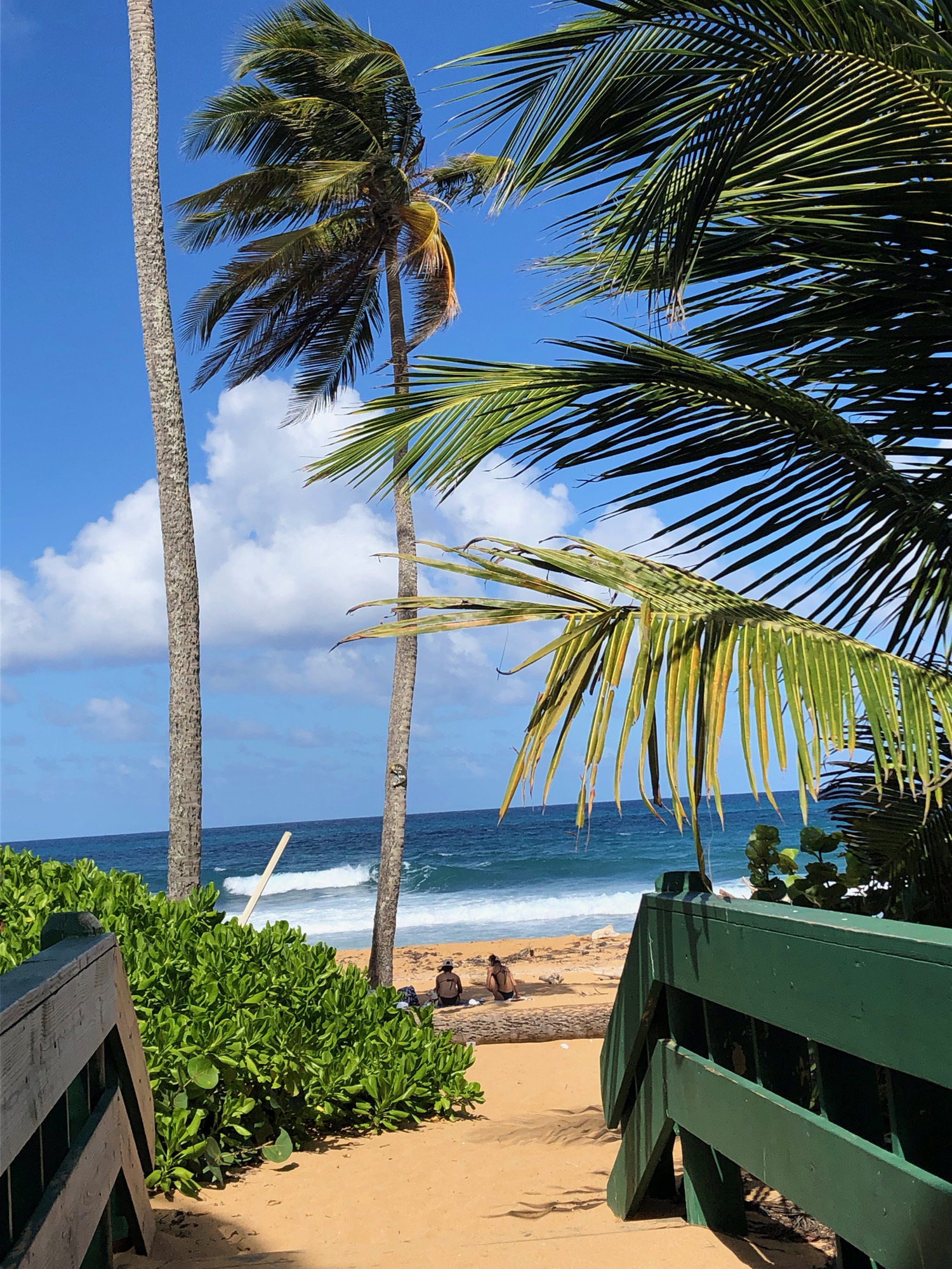 Puerto-Rico-Kiosk-beach-walkway ▷ Acabo de volver de: San Juan, Puerto Rico