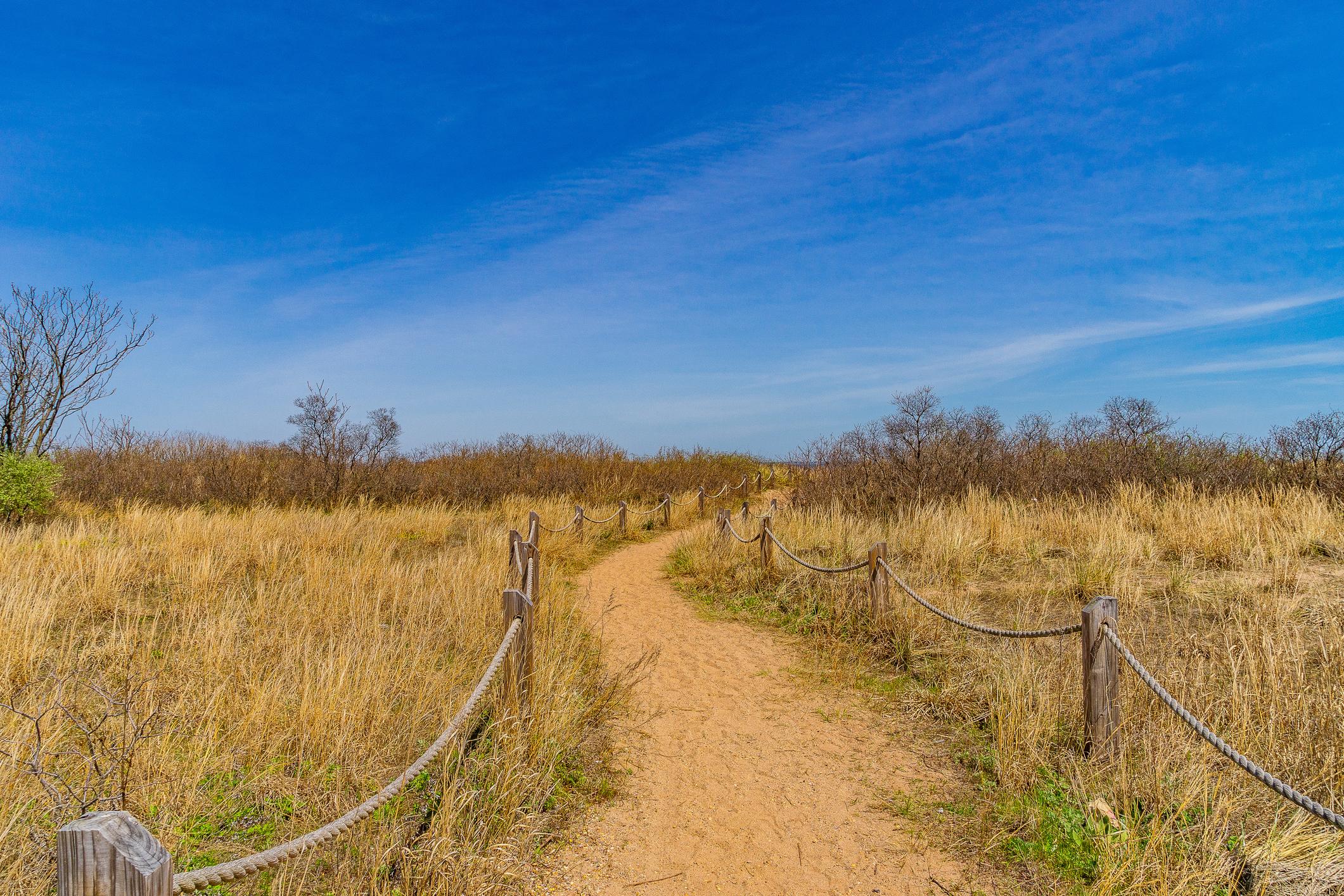 Trail-sand-dunes-Staten-Island-New-York ▷ 7 cosas que hacer en Staten Island, Nueva York