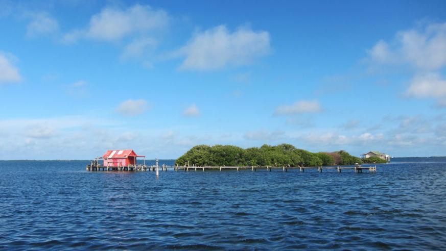 6 Things to Do On and Around Sanibel Island, Florida