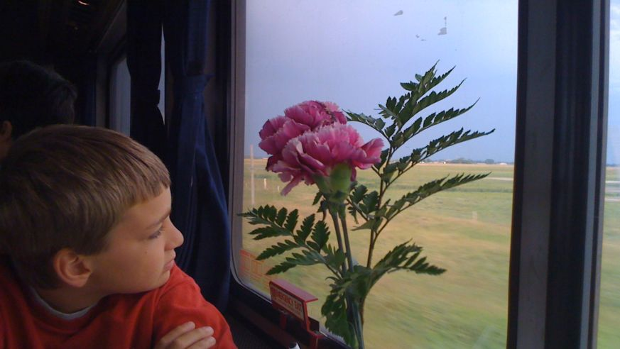 6 Ways to Have More Fun on Trips With Your Kids