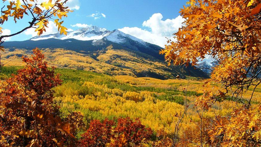 12 Best Fall Foliage Trips