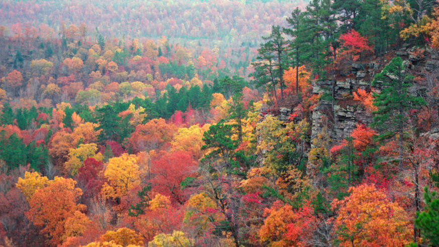 Arkansas Fall Colors 2020.Road Trip The Arkansas Ozarks Budget Travel