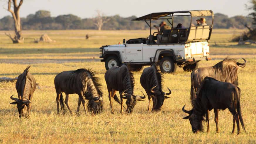 how to plan an african safari vacation