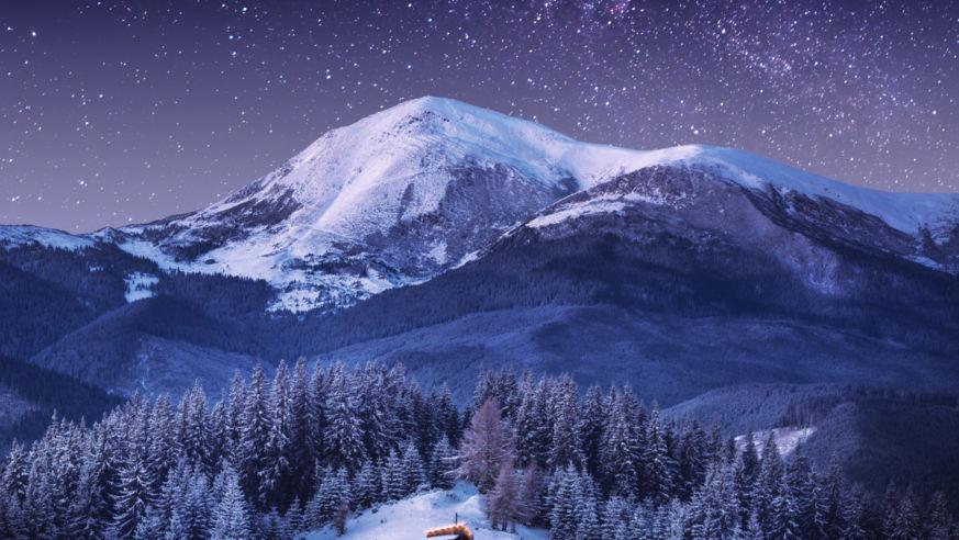 Shutterstock Rf 540142198 1
