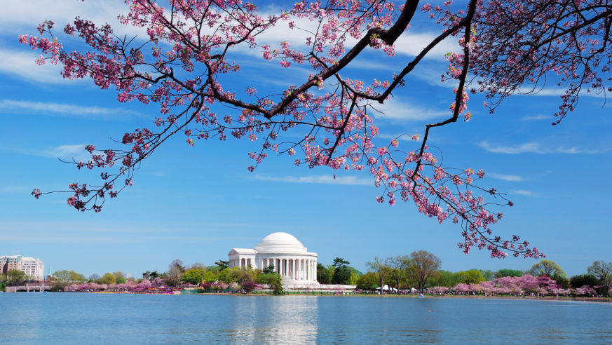 20 Fabulously Free Things to Do in D.C.