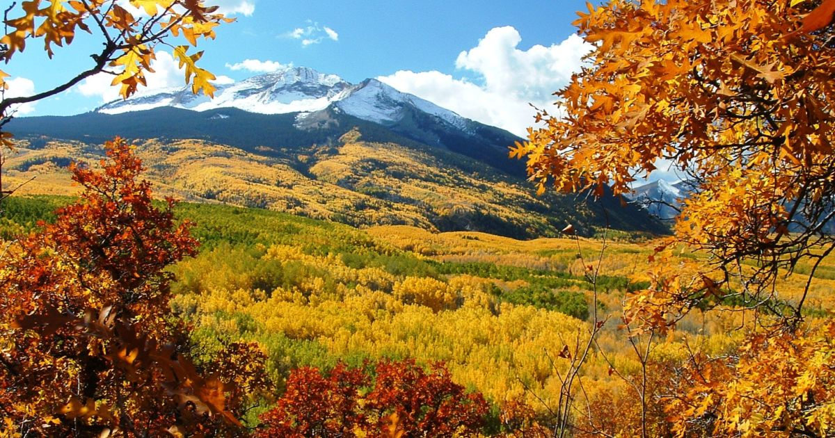 12 Best Fall Foliage Trips