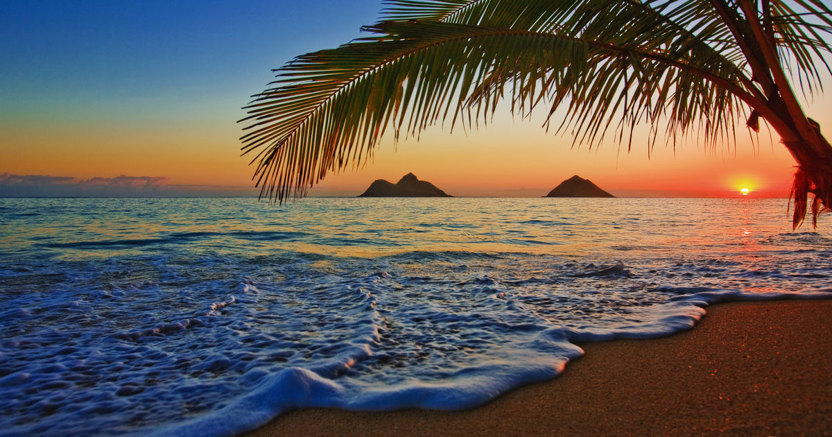 Hawaii launches new remote work program   Budget Travel