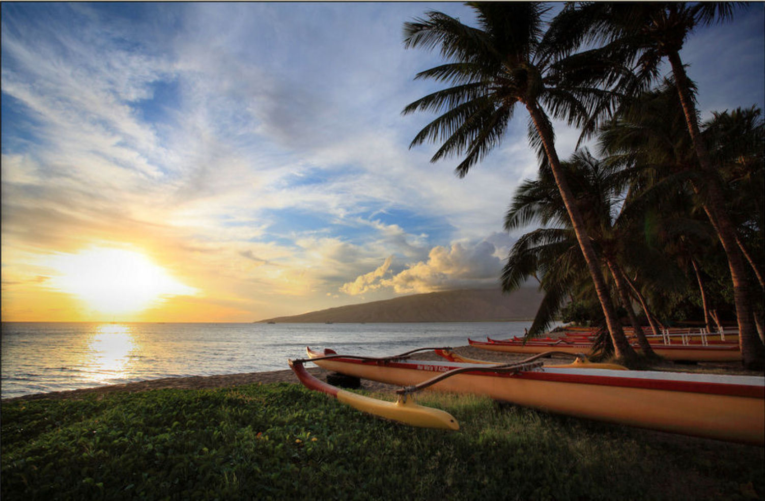 canoes-on-the-beach-in-maui