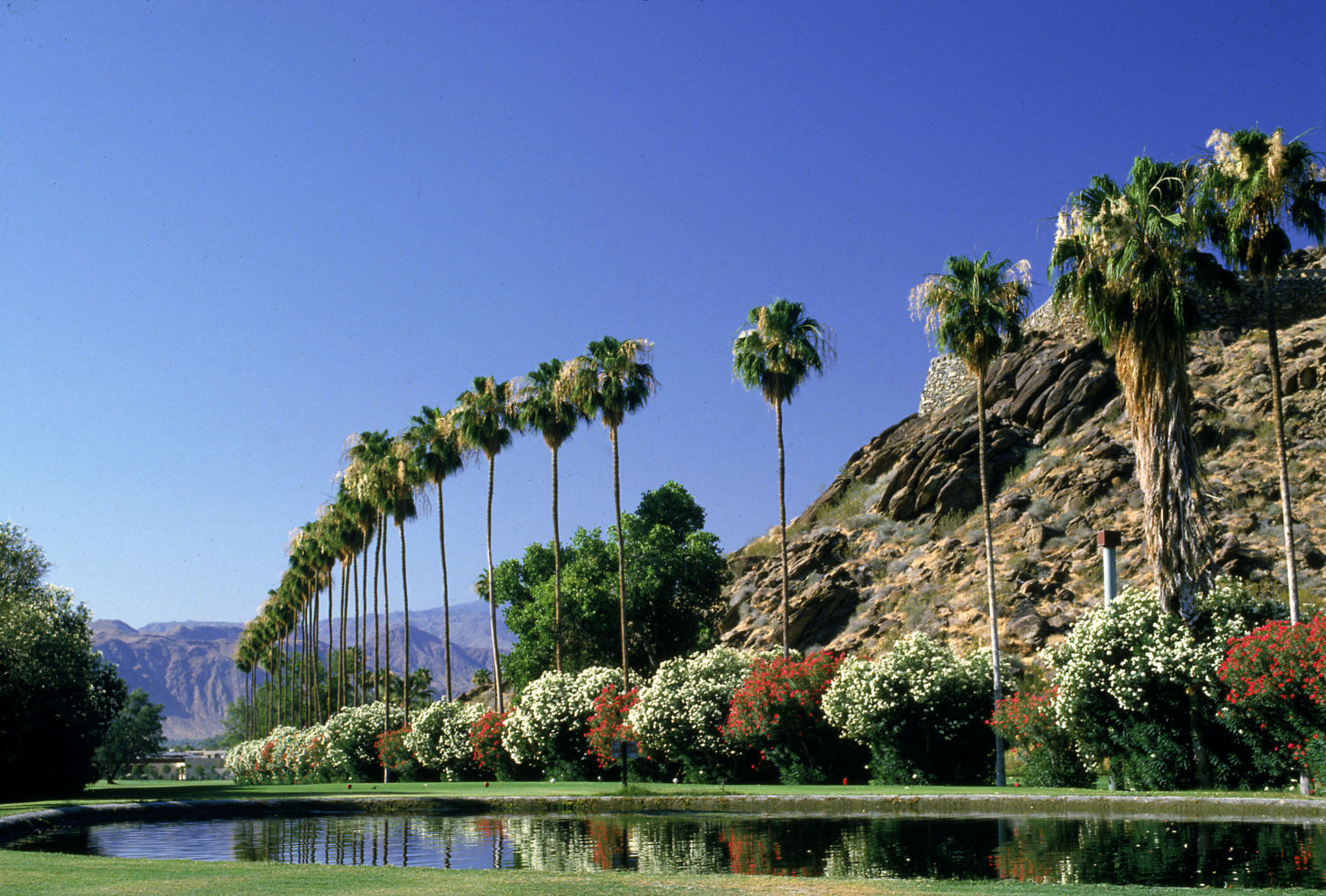 A view of Palm Springs, California