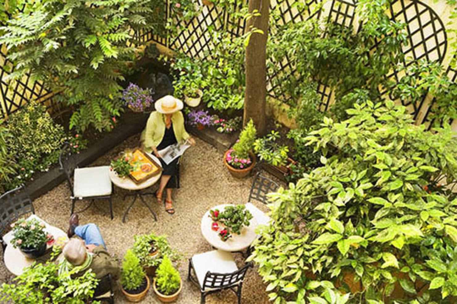 Hotel d'Albion's garden