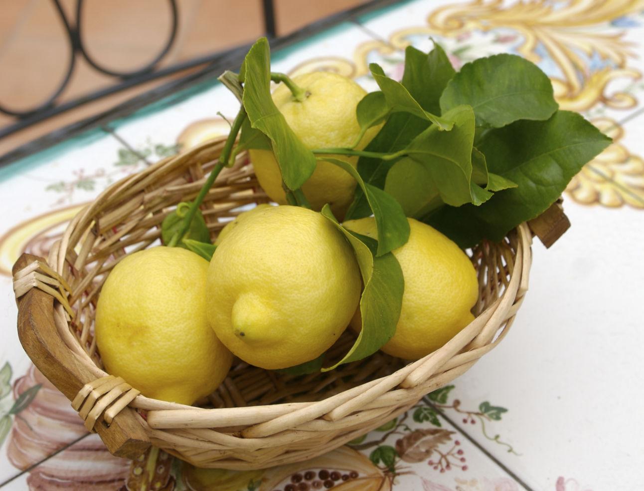 Amalfi-Coast_4681077_lemons