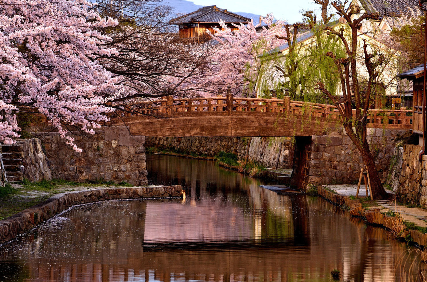 """This photograph of a bridge on the canal in Omihachiman, Japan is a great example of what the magic light can do for a photograph. This is the immediate afterglow of sunset, a beautiful time for cityscapes and landscapes."""