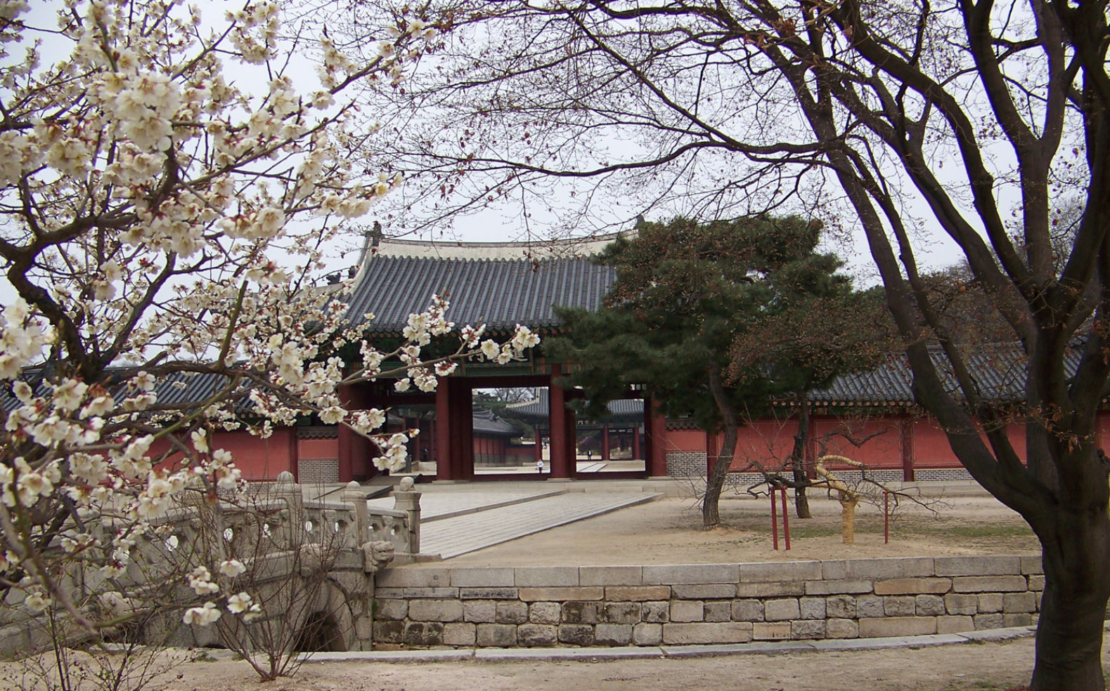 """April is a beautiful time in Korea. Cherry blossoms and a warm breeze make a stroll through the Changdeokgung Palace, one of several traditional palaces in the heart of Seoul."""