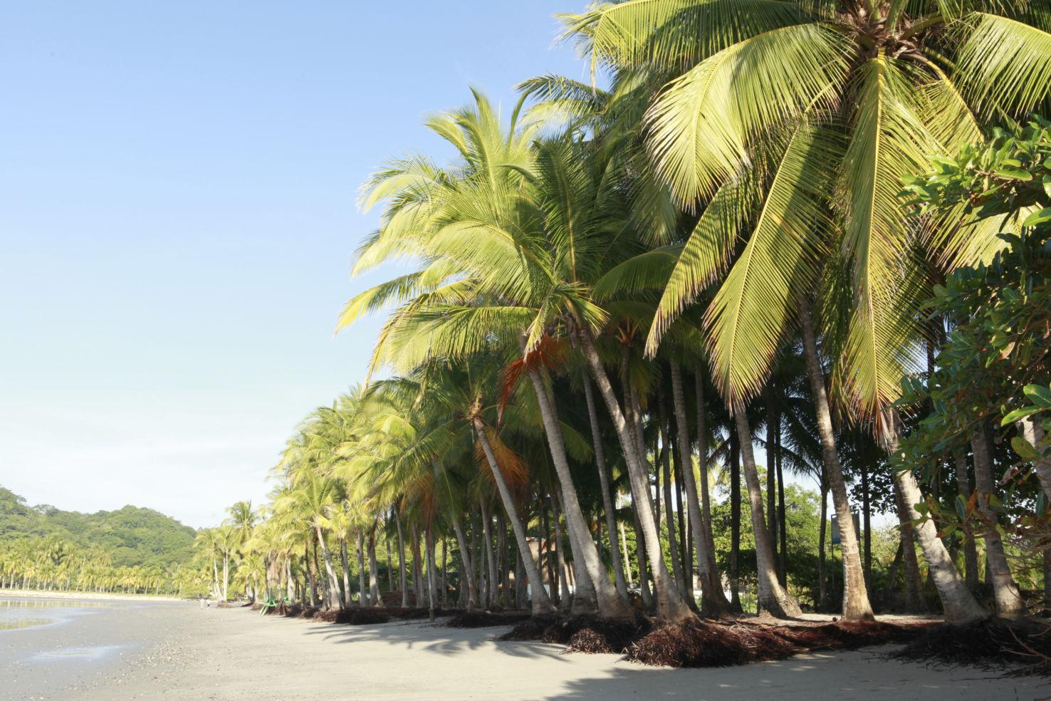 Costa-Rica_Whitney-Tressel_Playa-Samara