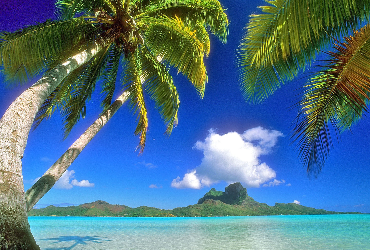 A view of Bora Bora, Tahiti