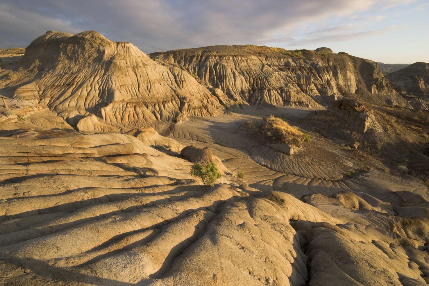 Badlands, erosion rills, Dinosaur Provincial Park, Alberta, Canada
