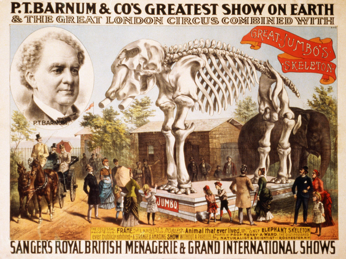 P.T. Barnum, circus poster, Great Jumbo's Skeleton, Barnum Museum, Bridgeport, Connecticut