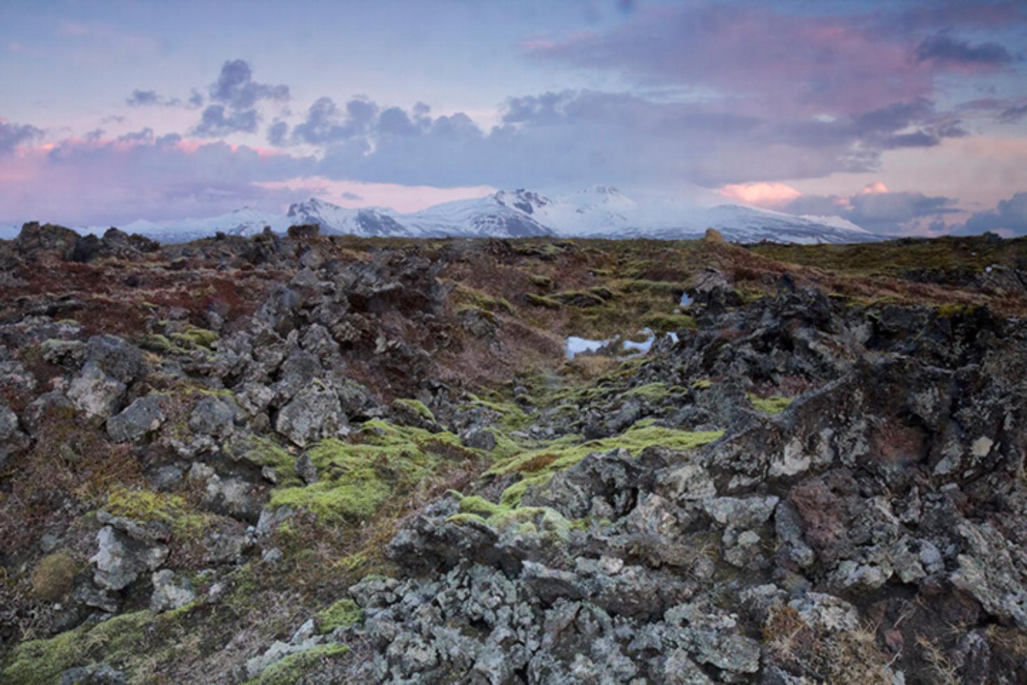 Icelandic lava field