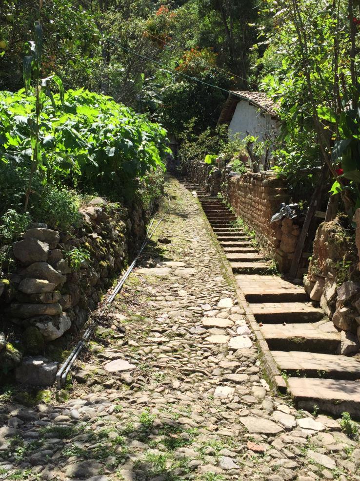San Sebastian del Oeste walking