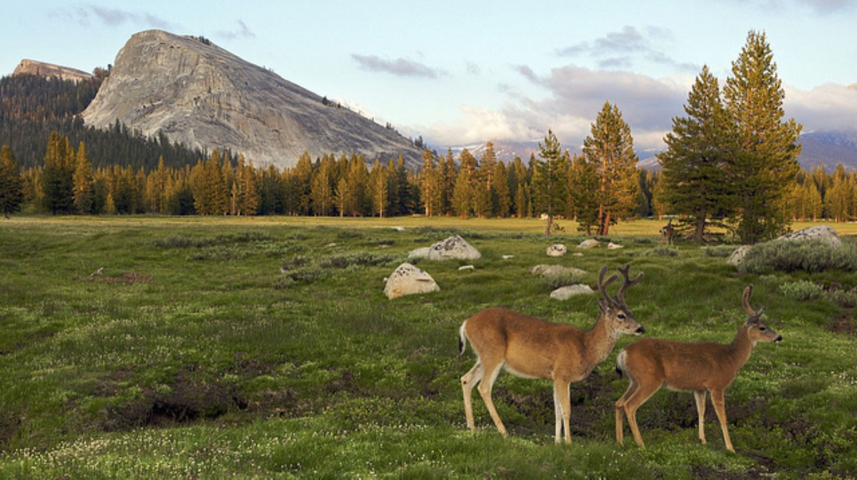15 Most Beautiful National Parks In America Budget Travel