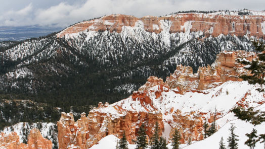 5 National Parks to Visit in Winter tumbnail