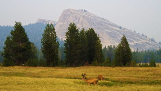 Great American Outdoors Act becomes law tumbnail