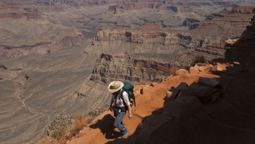 "A Grand Canyon park ranger's plea to the public: ""please, stay home!"" tumbnail"