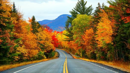 The fall foliage in New England is set to be remarkable – and early tumbnail