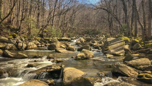 The budget guide to Great Smoky Mountains National Park tumbnail