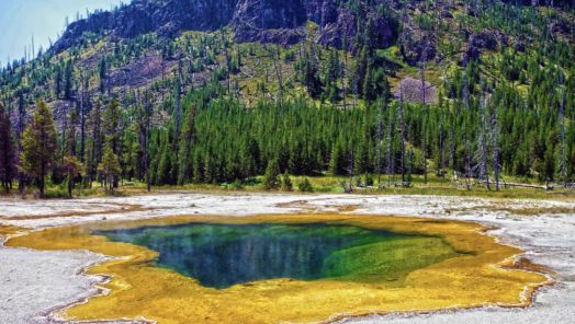 10 insider tips for visiting Yellowstone tumbnail