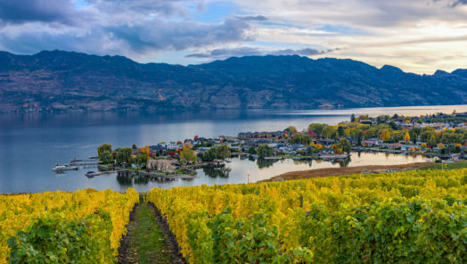 Where to Travel for the Best Canadian Wine tumbnail