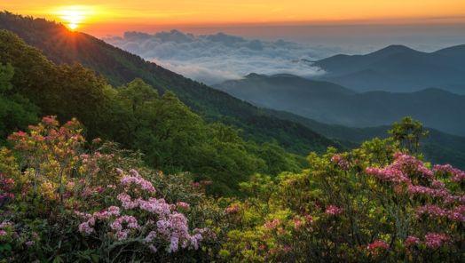 Travel Deal - North Carolina Black Mountain tumbnail