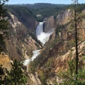 14 Billings Yellowstone Waterfall By Michele