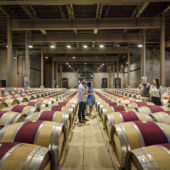 wine barrels lining warehouse floor