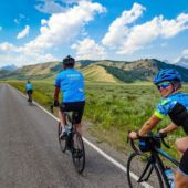 A view of cyclists on a road in Yellowstone National Park