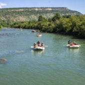 Durango Rafting Lower Animas
