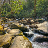 A view of boulders and a rushing river in Great Smoky Mountains National Park