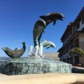 Monterey CA porpoise sculpture