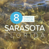 Intro title to Sarasota Video