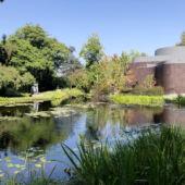 Norton Simon Museum Garden Pond