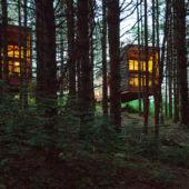Whitetail Cabin Rental Plans Matter