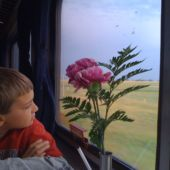Boy looking out train window tips for traveling with kids