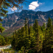 Glacier National Park, McDonald Creek