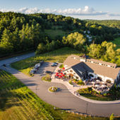 aerial photos of winery