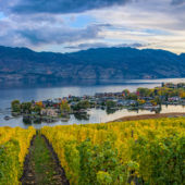 Okanagan Valley Wine