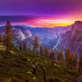 Shutterstock Rf 477545791
